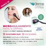 26/11 - Microagulhamento Facial & Corporal